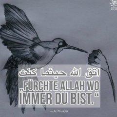 ibnAbdullah