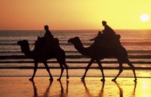 Marokko beliebtestes Reiseziel Afrikas